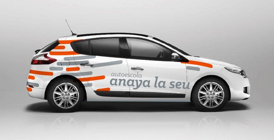anaya1