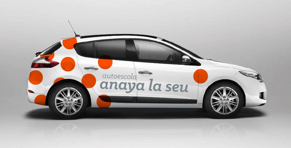 anaya3